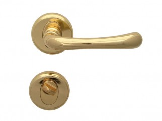 Draco Door Handle - For WC, Gold