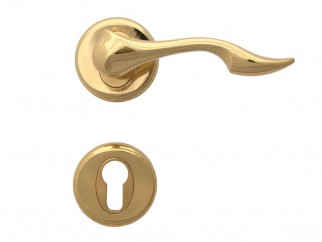 Dolphin Door Handle - For Cylinder, Gold